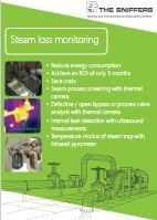 Steam loss monitoring
